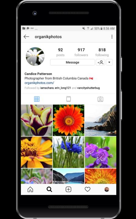 Organik Instagram