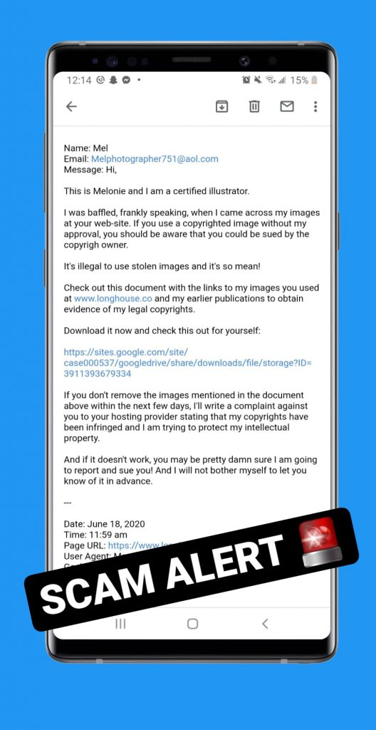 """""""Copyright Content on Business Website Scam E-Mail Example"""""""